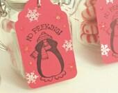 No Peeking Christmas Tags Gift Wrap Presents Penguin Snowflake