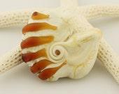 Lampwork Bead, Glass Shell Focal Bead, Nautilus Seashel,  Etched Matte Ivory