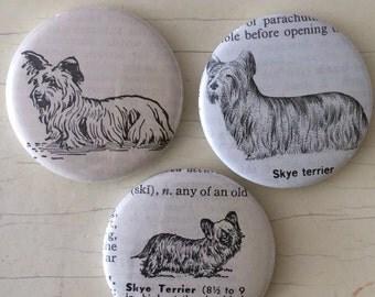 Skye Terrier Vintage Dictionary Illustration Magnet Set of 3