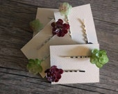 Mini succulent Bobby pins