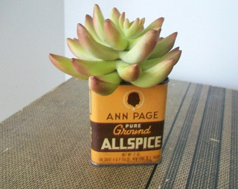 Faux cactus planted in Vintage spice tin Repurposed antique allspice container Country cottage chic decor