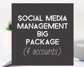 Social Media Management Big Package - 4 Accounts, Social Media Assistance, Social Media Marketing, Virtual Assistant