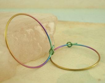 25mm Niobium Hoop Earrings - Hypo Allergenic in Your Pick of Colors