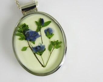 Blue Veronica, Pressed Flower Oval Pendant, Lisa Pavleka Setting, Resin, Pressed Flower Jewelry(1898)