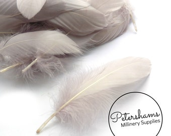 Loose Goose Nagorie Feathers for Millinery and Hat Trimming - Minky Grey