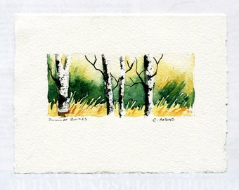 Summer Birches Original Hand Painted Watercolor Art Card