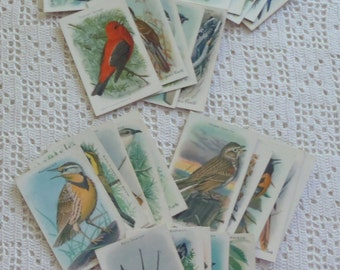 Vintage Cards Useful Birds of America Ninth & Tenth Series 30 Cards