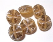 Adorable Caramel Glass Vintage Buttons Set 6 Silver Gilded 12mm Shank Sewing Buttons