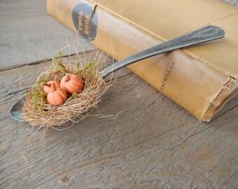 Romantic Rustic Autumn Orange Pumpkins Farmhouse Silver Plate Spoon Home Decor
