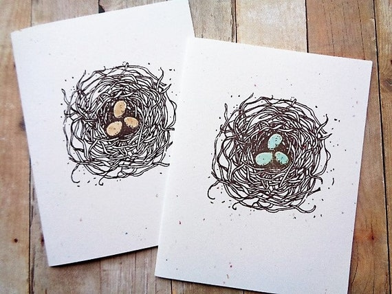 Bird Nest Robin's Eggs Note Cards Stationery Card Set Natural Woodland Cottage Farmhouse