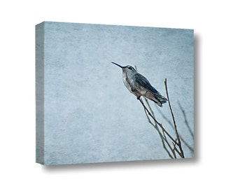 Large Canvas Wall Art Decor Resting Hummingbird