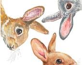 Bunny Rabbit Watercolor - 5x7 PRINT, Nursery Art, Rabbit Watercolour, Animal Art, Illustration Print