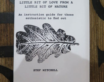 How to make a print from nature INSTRUCTION zine by Stef Mitchell 6 pages with illustrations