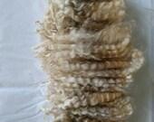 BFL English Leicester Longwool cross Locks/ Spinning Locks / Doll Hair / Felting (330)