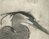 Great Blue Heron / Peregrine Falcon Diptych, Fine Art Etching