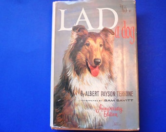Lad, A Dog, a Vintage Children's Book by Albert Payson Terhune, Illustrated by Sam Savitt