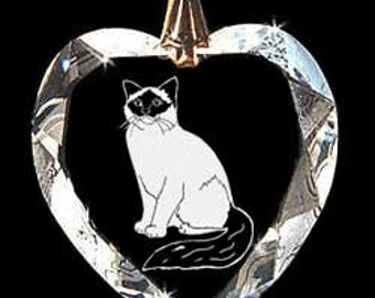 Birdman Cat Jewelry Hand Etched Austrian Crystal Custom made Necklace Pendant Suncatcher made with any Animal or Name YOU Want, Gift, kitty,