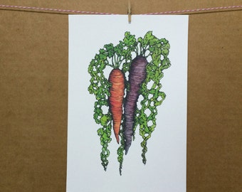 Watercolor/Ink-Food-Fruits/Vegetables-Carrots