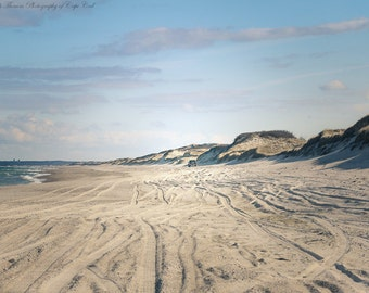 SANDY NECK BEACH, Cape Cod Photography, Massachusetts, New England, Travel, Atlantic, Ocean, Coastal, Landscape, Scenice, Liz Thomas