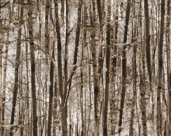 Brown Forest Trees # 8496B-77 Into The Woods Kanavs Benartex 1/2 Yard Cotton Fabric for Quilting Free Shipping