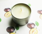 Plum Scented Candle - Vegan Candle - Homemade Candles - Natural Candles - Tin Candle - Container Candle