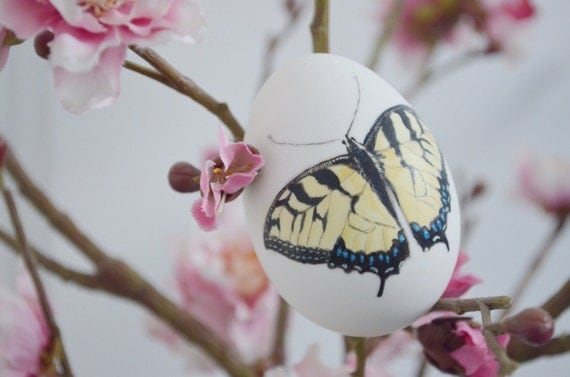 Hand painted butterfly on a white duck egg