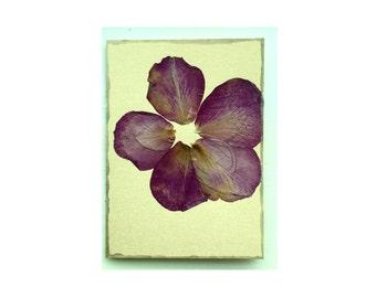 Rose petal Collage Card - Blank 5x7 (RP57-004)