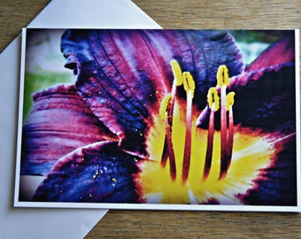 Purple and Yellow Flower Blank Greeting Card