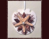 "RESERVED-RK Sand Dollar Sea Shell Keepsake Ornament Accent #84 (Size 3.25""), Beach/Nautical/Coastal Decor, Keepsake Ornament/Wall Accent"