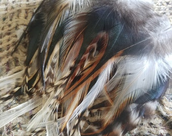 Harlequin Mix - Saddle Feathers - Lot of 50