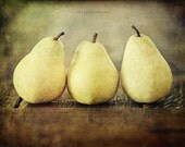 Rustic Autumn Pears, Brown Kitchen Decor, Fall Decor, Food Photography, Yellow, Pear Still Life, Pear Picture, Kitchen Picture or Canvas Art
