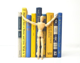 Vintage Blue and Yellow Book Collection