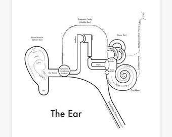 Ear Print 8x8