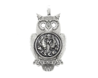 An amazing medallion necklace with the Pisces medallion of The Zodiac