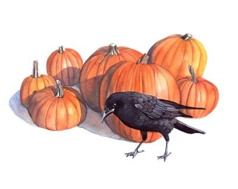 Crow with Pumpkins print of watercolour painting - Halloween decor - wall art 5 by 7 size smallest print - P8715