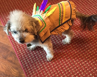 Lil' Indian Dog Costume