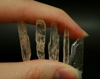 Kunzite Crystals, Set of 5 (Brazil)
