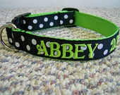 """Personalized 1"""" wide Polka Dot Dog Collar"""