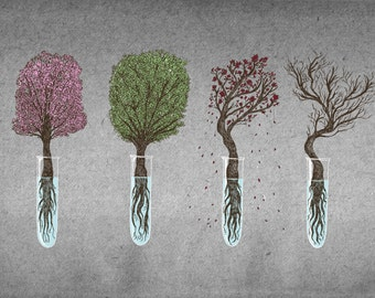 A Bonsai For All Seasons- A3 nature science art print by Jon Turner