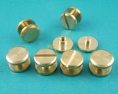 10*3mm Solid Brass Rivet Chicago Screw for Leather Craft Belt Wallet / Flat Head (FB10X3)