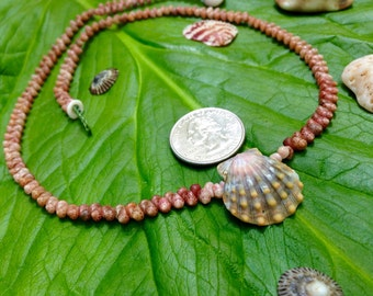 Sunrise Shell Lei - Kauai Lei - Hawaii Shells Beach Jewelry Eco-Friendly Collected Rare Shells Island Mermaid Style Aloha Gift Reef Gems