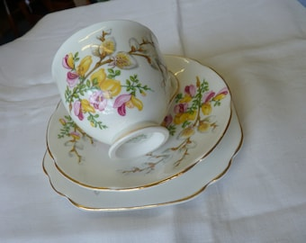 VINTAGE English CHINA Tea Cup TRIO Saucer Plate Gorse Broom Whin Pussy Willow