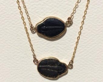 Medium Trilobite Gold Open Bezel Necklace