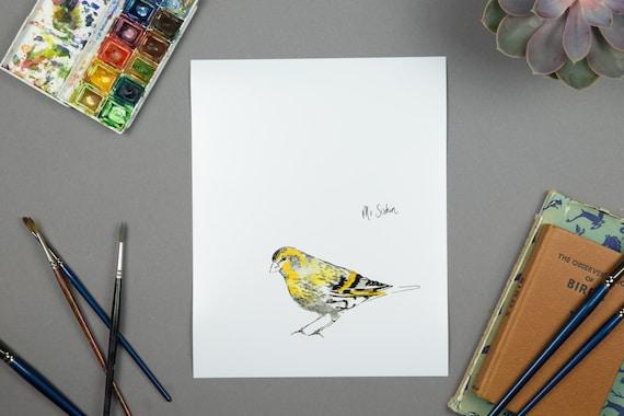 illustration bird watercolour illustration print - siskin
