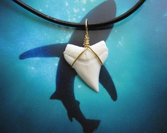 Shark Tooth Necklace, Modern Day White Shark tooth, Brass wire wrapped, Leather cord