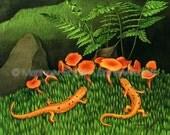 Orange Salamander, Salamander Print, Salamander Art, Wall Art, Home Decor, Watercolor Painting, Kids Room, Red Efts & Smooth Chanterelles