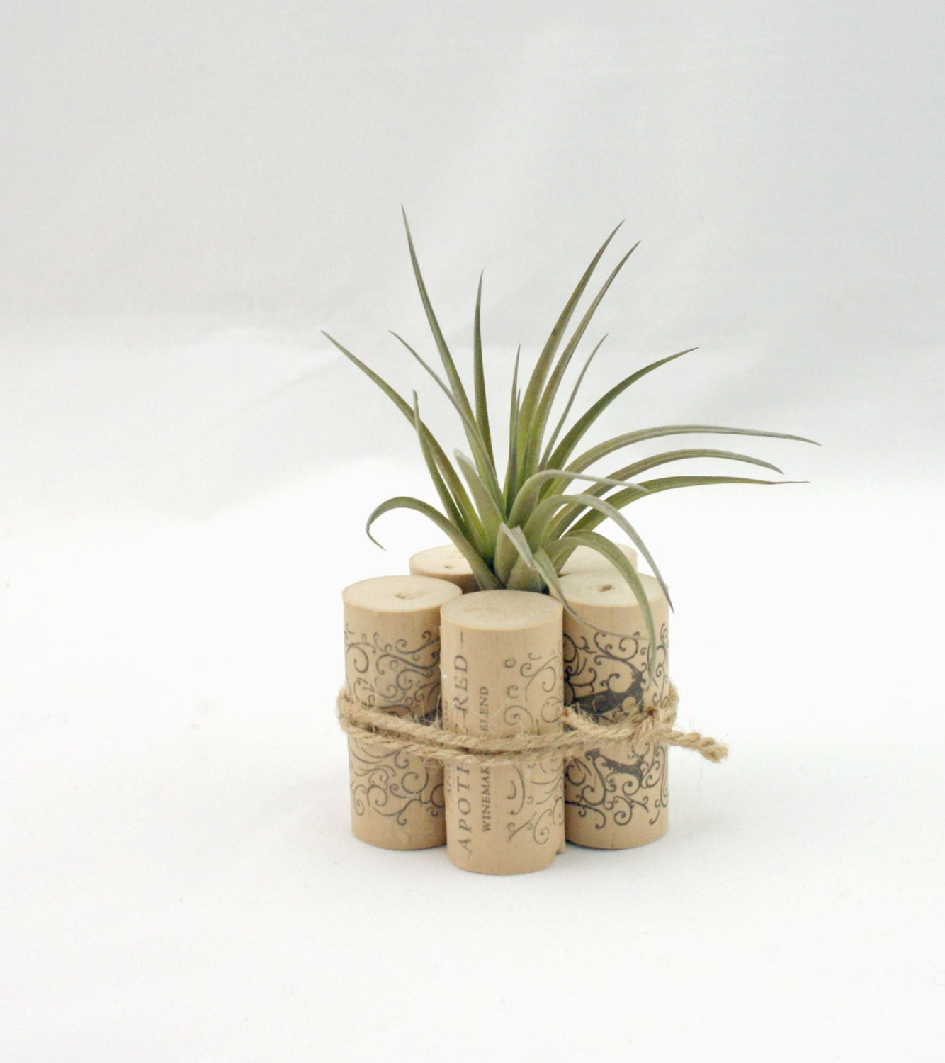 Air plant container wine cork decor air plant decor rustic for Air plant decoration