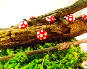 Mushrooms for Fairy Garden Terranium miniature red mushrooms set of 6
