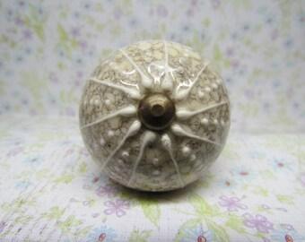 Sea Urchin Like Wine Bottle Stopper