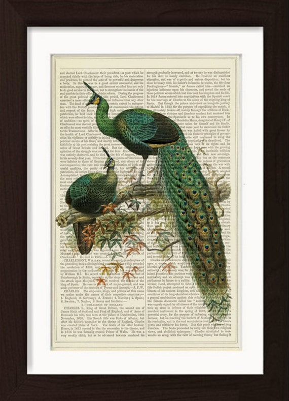 Peacock Print 2 Peacocks on Branch print on vintage (1860's) upcycled book page mixed media  digital